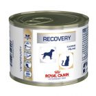Royal Canin Veterinary Diet Feline Recovery Hrană umedă