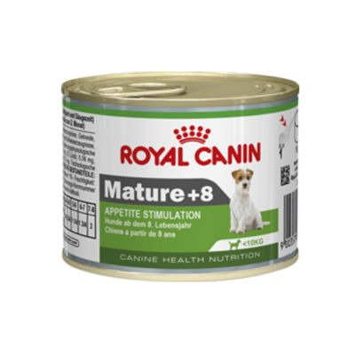 Royal Canin Wet Mini Mature 8 Appetite Stimulation At Bitiba