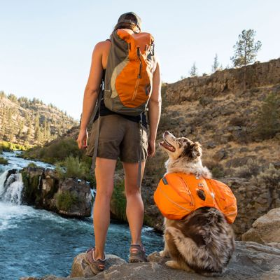 Ruffwear Approach Pack Dog Rucksack