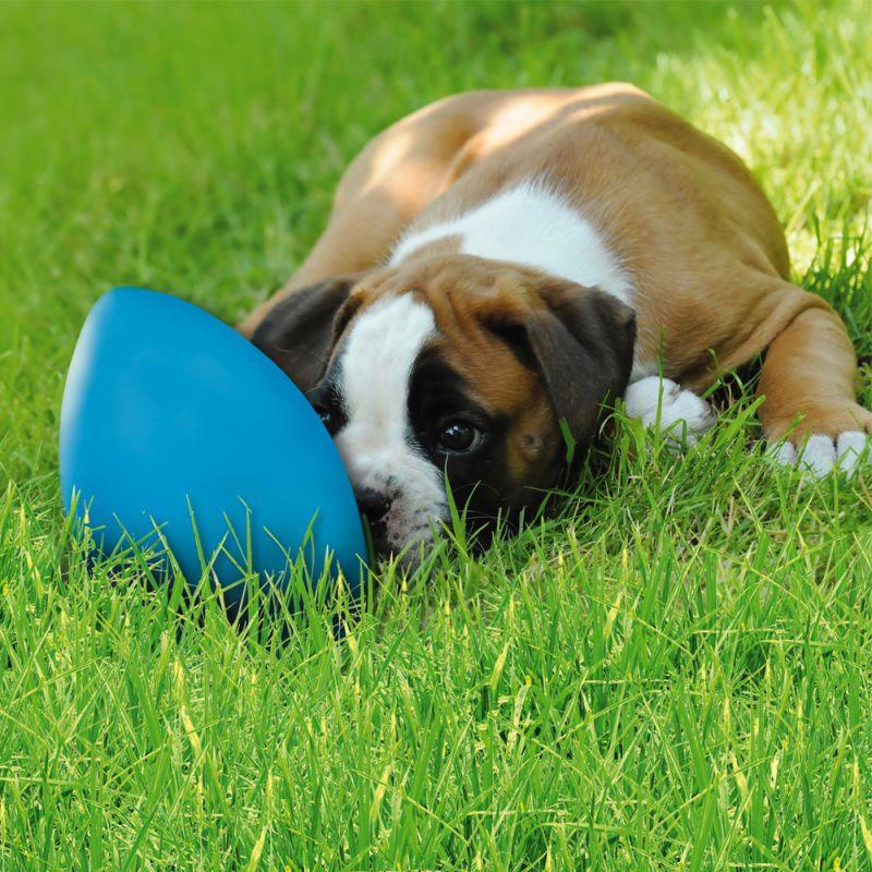Игрушка для собак runningEgg