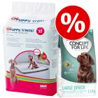 Savic Puppy Trainer Pads + 1,5 kg Concept for Life Junior i fantastiskt set!