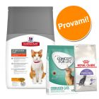 Set gatti sterilizzati Hill's Feline Sterilised Cat Young Adult, Concept for Life & Royal Canin