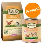 Set prova misto! Lukullus Junior