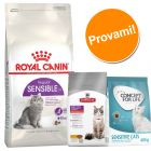 Set gatti sensibili Royal Canin, Concept for Life & Hill's