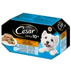 Set misto Cesar Senior 10+