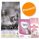 Set per gattini Pro Plan Junior, Royal Canin & Concept for Life Kitten