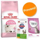 Set per gattini Royal Canin Kitten, Concept for Life & Hill's