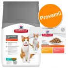 Set prova misto Hill's Science Plan Feline Sterilised secco + umido