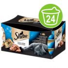 Sheba Dômes Filets Exquis 24 x 80 g pour chat