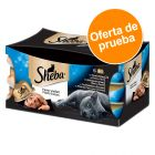 Sheba Feine Filets 6 x 80 g - Pack mixto