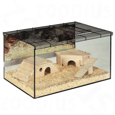 Hamster Cages Great Selection At Zooplus Small Pet Terrarium Kerry