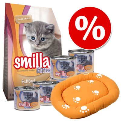 Smilla Kitten Starter Set + Cuscino