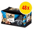 Sparpack: Sheba Mealtime Luxuries 48 x 80 g