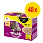 Sparpack: Whiskas 1+ Creamy Soup 48 x 85 g