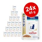 Sparpaket Royal Canin Veterinary Diet 24 x 100 g / 85 g