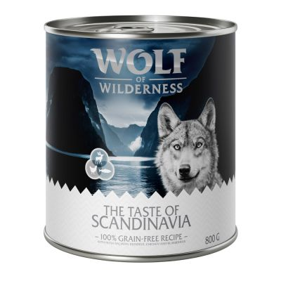 Sparpaket Wolf of Wilderness Adult 24 x 800 g
