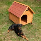 Spike Premium Classic Dog Kennel