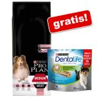 Stor påse Pro Plan + Purina Dentalife Snacks på köpet!