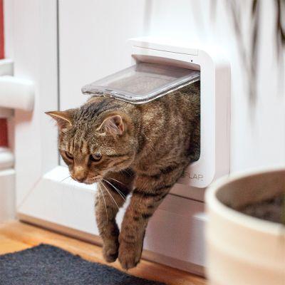 50579a26f253 SureFlap Microchip Πορτάκι Γάτας οικονομικά από την zooplus