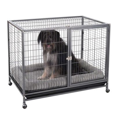 Tabby Indoor Cage L