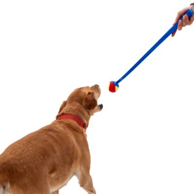 Tennis Ball Launcher Dog Toy