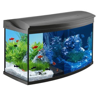 Wonderbaarlijk Juwel aquarium goedkoop bij zooplus: Tetra AquaArt Evolution Line NX-11