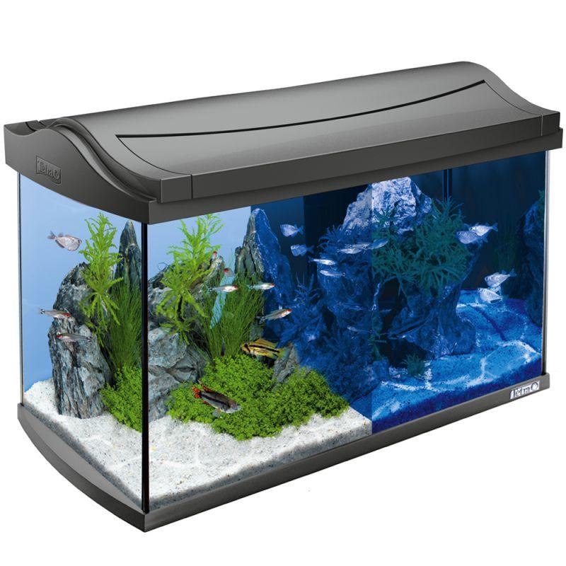 Schön Aquarienrahmen Bilder - Benutzerdefinierte Bilderrahmen Ideen ...