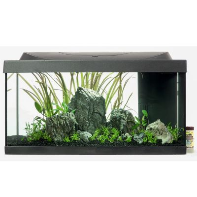 tetra aquarium komplett set minilandschaft g nstig bei zooplus. Black Bedroom Furniture Sets. Home Design Ideas