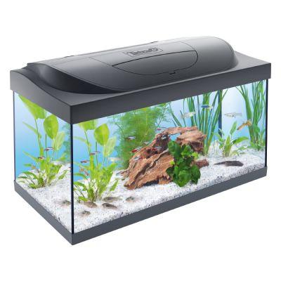 Verbazingwekkend Tetra aquarium goedkoop bij zooplus: Tetra Starter Line Aquarium LED CY-51