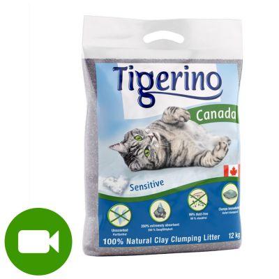 Tigerino Canada żwirek Dla Kota Nieperfumowany Tanio W Zooplus
