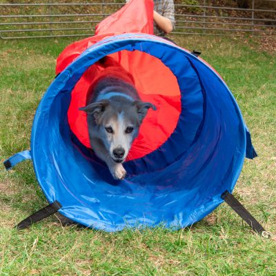 Túnel flexible Agility Fun & Sport