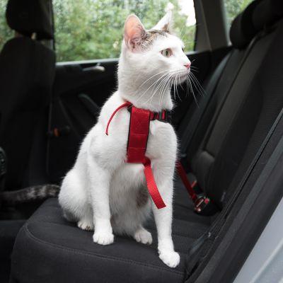 ae2532160380 Trixie Σαμαράκι Αυτοκινήτου για Γάτες φθηνά από την zooplus