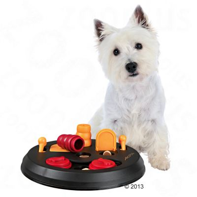 Trixie Activity Flip Board Dog Toy Great Deals At Zooplus