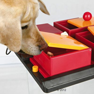 Trixie Dog Activity Poker Box juego de inteligencia