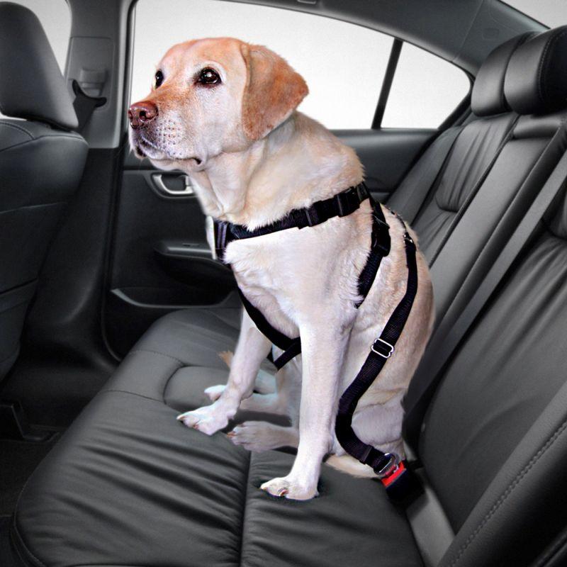 Trixie Dog Car Harness