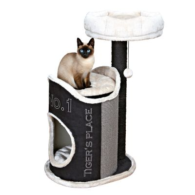 Siamese cat on cat tree