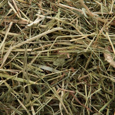Vilmie Mountain Meadow Hay