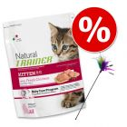 Welcome Kit Kitten Trainer Natural