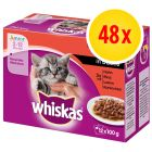 Whiskas Junior 2-12 meses 48 x 100 g en bolsitas