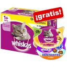 Whiskas 48 x 100 g sobres + 2 snacks Whiskas ¡gratis!
