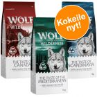 Wolf of Wilderness Adult The Taste Of - sekoitus
