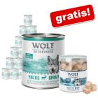 Wolf of Wilderness: Nassfutter 24 x 800 g + Gratis-Snack