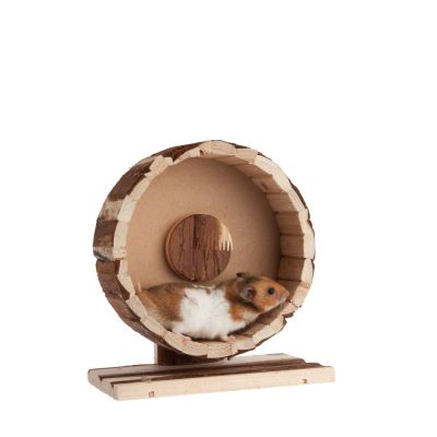 Wooden Exercise Wheel Speedy