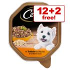 14 x 150g Cesar Trays Wet Dog Food - 12 + 2 Free!*
