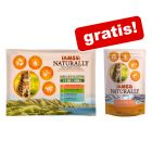 12 x 85 g IAMS Naturally Cat Adult Mix + Naturally Cat Adult Salmon på köpet!