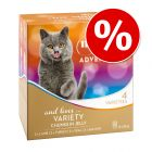 8 x 85g My Star is an Adventurer Mixed Pack Wet Cat Food - Special Price*