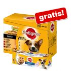 48 x 100 g Pedigree Frischebeutel + Dentastix
