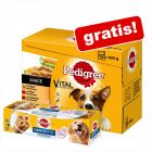 48 x 100 g Pedigree Pliculețe Multipack + Dentastix Twice Weekly gratis!