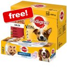 48 x 100g Pedigree Pouches + Dentastix Twice Weekly Free!*