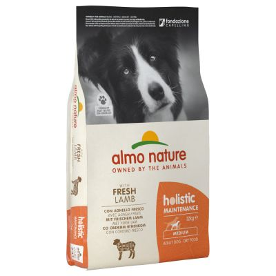 2 x 12 kg Almo Nature Holistic